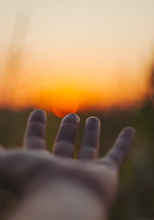 Hand reaching out in tall grass to the sunset on the horizon