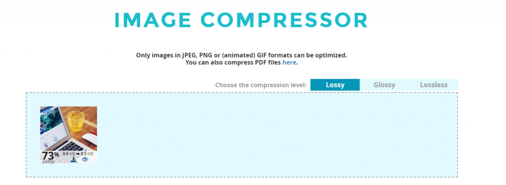 image compressor tool showing single image compressed in Shortpixel tool to help with increasing site speed