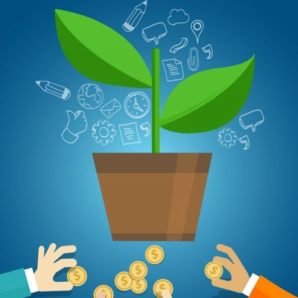 Investors giving seed money to growing plant in pot